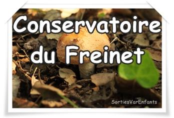 CONSERVATOIRE DU PATRIMOINE DU FREINET : balades nature et culturelles de qualité