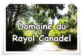 LE DOMAINE DU RAYOL CANADEL : des ateliers enfants dans un jardin grandiose