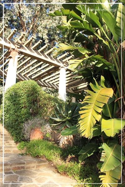 Le domaine du rayol canadel des ateliers enfants dans un for Jardin rayol canadel