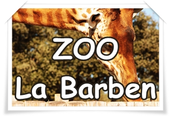 ZOO LA BARBEN : le plus grand zoo du sud-est  //Département Limitrophe//