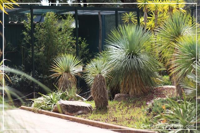 Le jardin zoologique tropical de la londe esp ces for Jardin zoologique tropical
