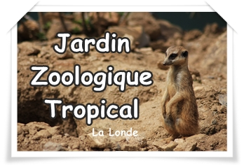 Zoo archives sorties var enfants for Jardin zoologique tropical